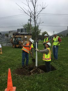 Arbor Day Tree Planting with PennDot