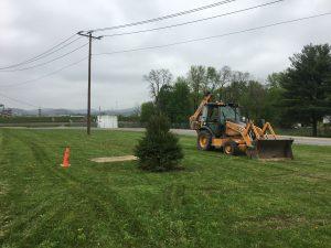 Arbor Day Tree planting 2