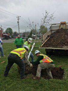 Arbor Day Tree planting 3